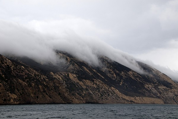 Flowing Fog on Santa Cruz Island