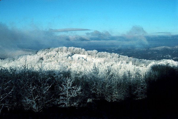Snow Covering the Smokies