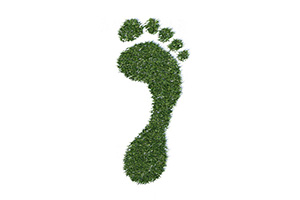 3D Green Footprint