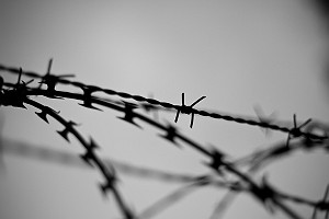 Barbed Wire Border Protection