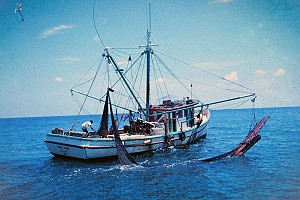Double Rigged Shrimp Trawler off Texas