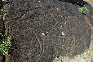 Fish Petroglyphs at Rano Kau