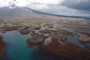 Low Tide on Augustine Volcano