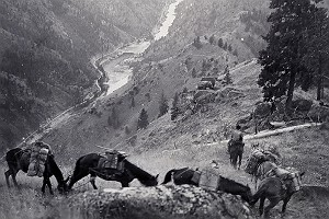 Vintage Salmon River Canyon